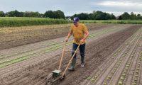 Henk Boer in opleiding voor Herenboer-boer op Hof van Rhee