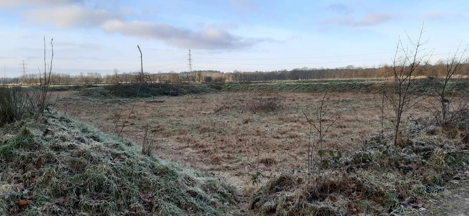 Gerestaureerde Celtic Fields in het Noordsche veld bij Zeijen. Op de wallen zijn diverse struiken aangeplant.