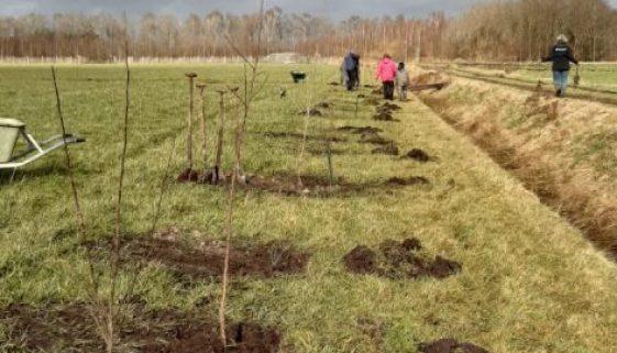 13 maart 2021 - Aanplanten eetbare houtopstand