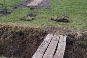 25 maart - celtic field stroken