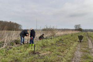 Aanplant stekelhaag (natuurlijke wildkering)