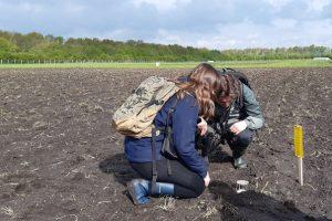 Potval checken voor het vangen van loopkevers