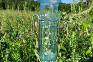 2 aug - opgeteld 86mm water gevallen afgelopen week