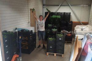 13 aug - oogst weer binnen